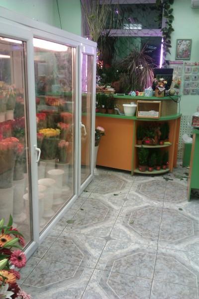камера для выставки и хранения </p> <p>цветов