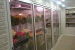 оборудование для хранения цветов